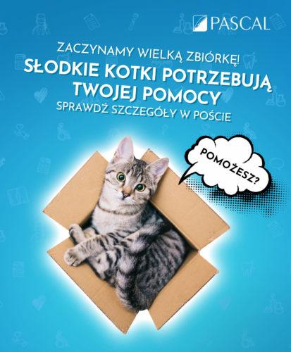 FB-Os-czasu-Koty